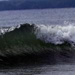 Японские ученые разработали автозащиту от цунами