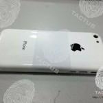 Возможное фото пластиковой крышки дешёвого iPhone и подробности про аппарат