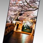 На выставке в Японии представлена уникальная панель для планшета