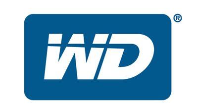 WD купила компанию_которая занималась разработкой SSD дисков