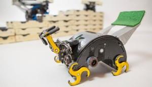 Исследователи из Гарварда используют термитов как прототип для новых роботов