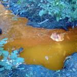 Ученые нашли новый способ утилизации сточных вод