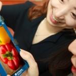 LG подготовила к выпуску 5,5-дюймовый QHD дисплей для смартфонов