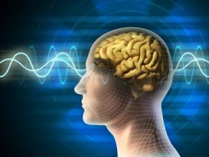 передача информации через тело человека