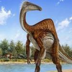 Загадочный «длиннорукий» динозавр оказался орнитомимом