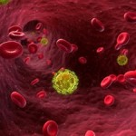 Почему только 1 человек излечился от ВИЧ-инфекции?