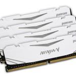 Panram представила модули памяти Ninja-V DDR4-3300