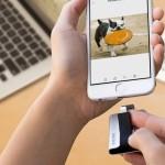 SanDisk iXpand: необычный флеш-брелок с коннекторами USB и Lightning