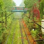 Железнодорожные пути очистит лазер