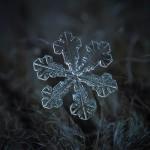 Почему снег белый, хотя снежинки прозрачные?