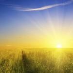 Как бы выглядело небо, если бы вместо Солнца были другие звезды?