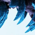 Обнаружен самый прочный материал биологического происхождения