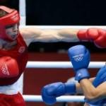 Ученые выявили взаимосвязь между боевыми поединками в спорте и уменьшением головного мозга