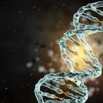 В клетках человека обнаружено более сотни «чужеродных» генов
