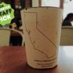 Кофейный стаканчик, из которого появляются цветы, изобрел американский студент