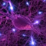 Wi-Fi-наночастицы могут передавать сигналы прямо из глубин головного мозга