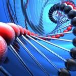 В ДНК можно сохранять сотни тысяч терабайтов