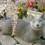 В Канаде устроили вечеринку для уходящего на пенсию кота